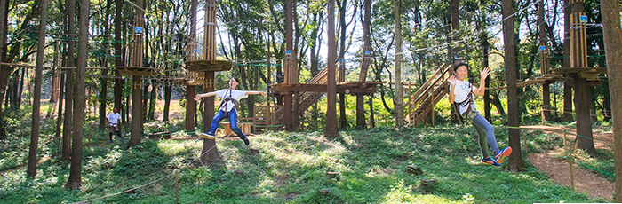 Come and visit our Forest Adventure in CHIBA!